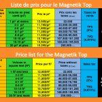 Eko-Taïga Magnetik Top